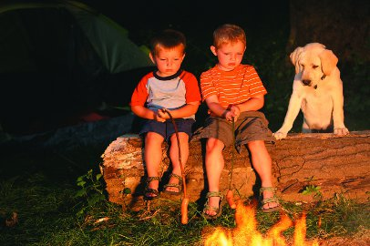 children cooking sausages on sticks around a fire with dog looking on